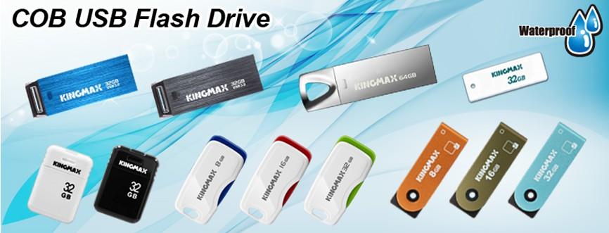 Kingmax_COB USB Flash Drives