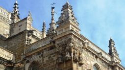 detalles-catedral