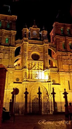 imagen-nocturna-catedral-astorga