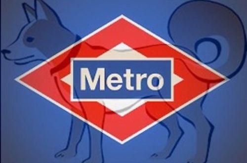 Viajar en Metro con tú perro