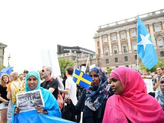 Suède livre Sanandaji immigration