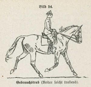 german cavalry trot HDV12