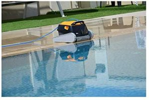 Dolphin Poolroboter