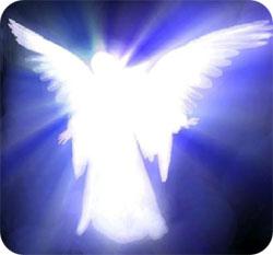 Sargengelis-angel
