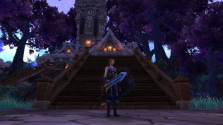 Winter wolf's Protection Paladin transmog for Dina