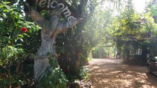 spice garden kosgoda