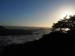 Ocean Pacific Grove