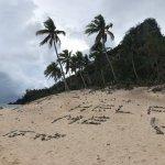 Fijis
