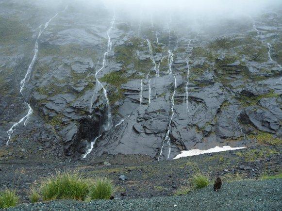 Wasserfälle und Kea