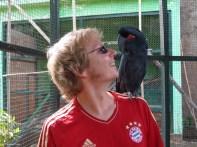 Birdpark auf Gili meno