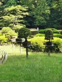 Innere Garten – Meiji-Jingu Gyoen