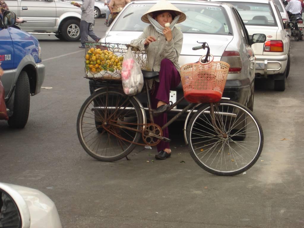 vietnam f r einsteiger von ho chi minh city zum mekong. Black Bedroom Furniture Sets. Home Design Ideas