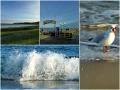 Ostseebad Binz Wasser