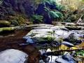Erksine Falls