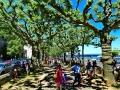 Allee am Streseman-Ufer