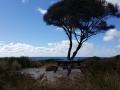 Bay Of Fires - Camper Stellplatz