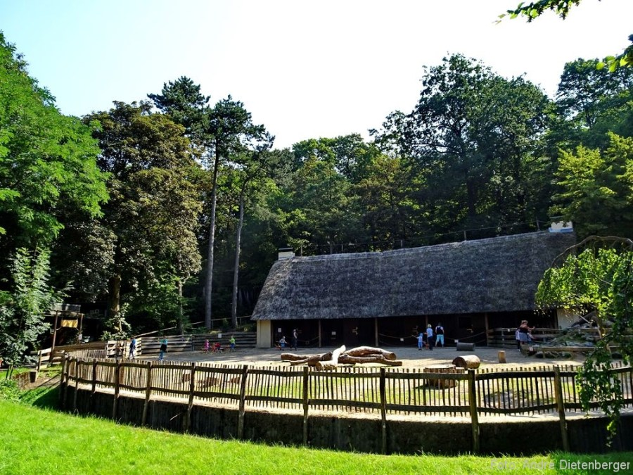 Zoo Wuppertal - Streichelzoo