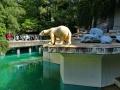 Zoo Wuppertal - Eisbärgehege