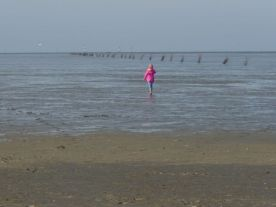 Nordsee20