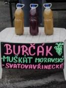3-blog-burcak-1160571
