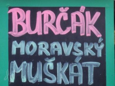 3-blog-burcak-1160580