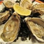 Frankreich: Von Strandfischern und Austern in der Bretagne