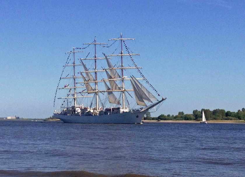 Dreimaster Dar Młodzieży auf der Elbe RIchtung Nordsee