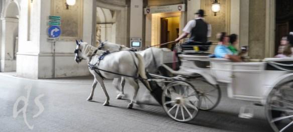 Offiziell war die Kaiserin aber in Pferdekutschen unterwegs
