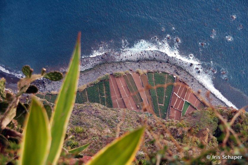 Madeira: Cabo Girão