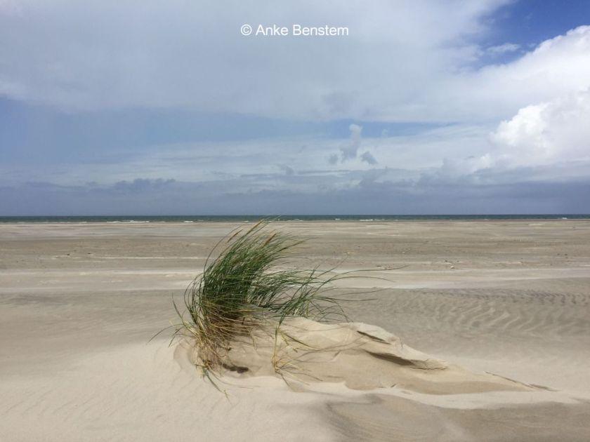daenemark_sand_1