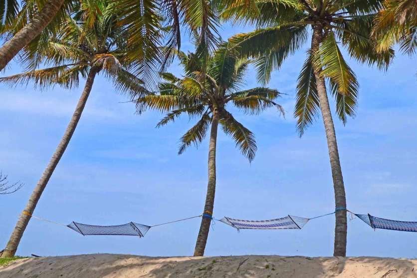 Hängematten unter Palmen am Strand von Thaikkal