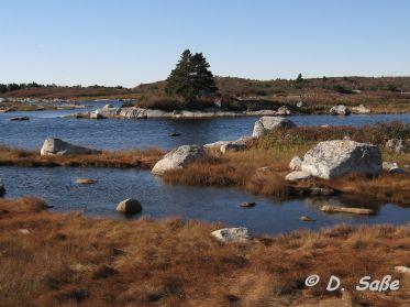 Wasser, Felsen, Bäume - Wildnis