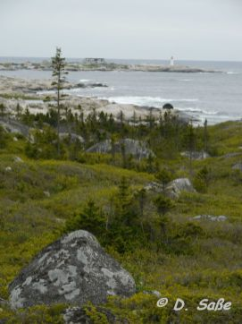 Grüne Landschaft, Meeresküste, einsamer Leuchtturm