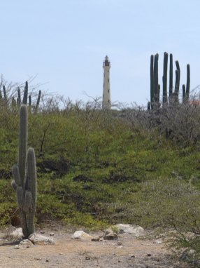Aruba-ABC-Inseln-ABC-A-08-CaliforniaLighthouse_1k4