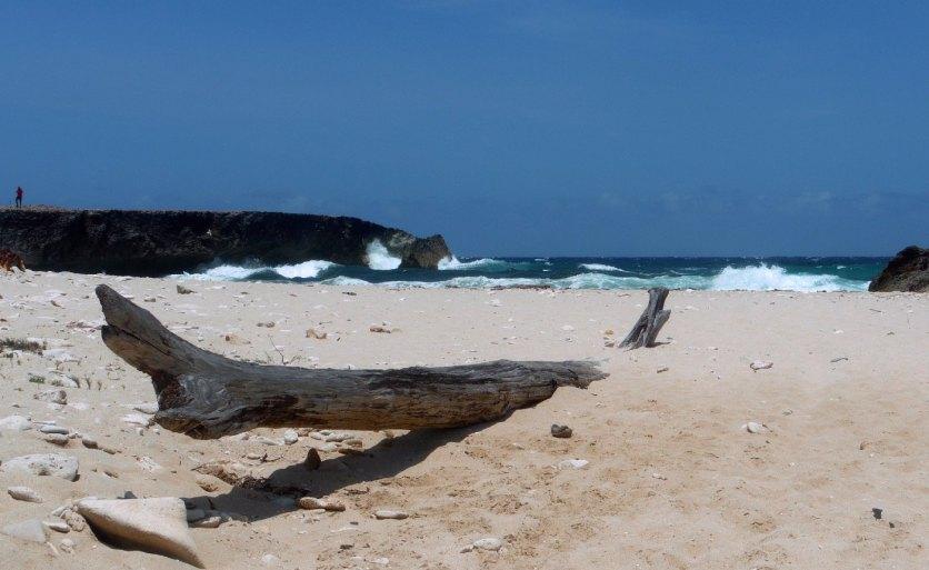 Aruba-ABC-Inseln-ABC-A-34-Strand_1k4