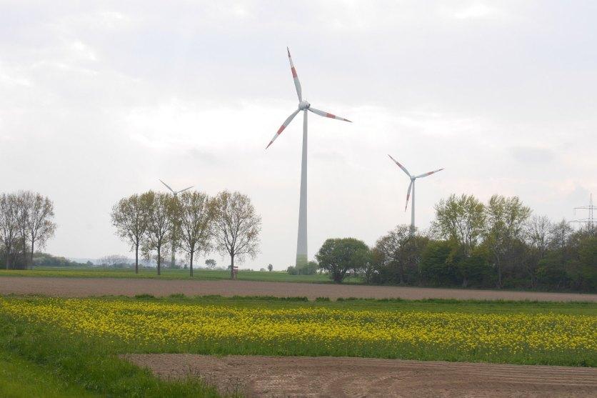 Windraeder-Natur-P1510785_1k4