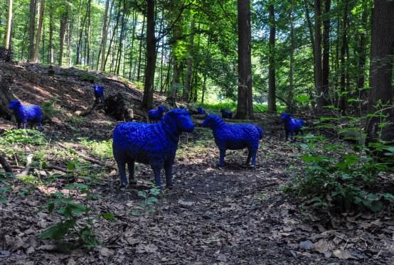 Blaue Schafe in Bad Iburg