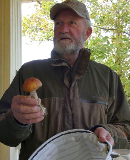 Staffan erklärt Pilze