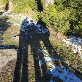 11 Harz Schnarcherklippen Benstem Reisefeder Natur wandern