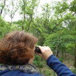 Niedersachsen: Kurz raus ins Grüne