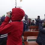 Drei Tage Nordsee: Alle Zugvögel sind schon da!!?