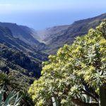 :-)  Lieblingsziel La Gomera