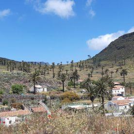 Reisefeder La Gomera Karin Kura Berge Palmen
