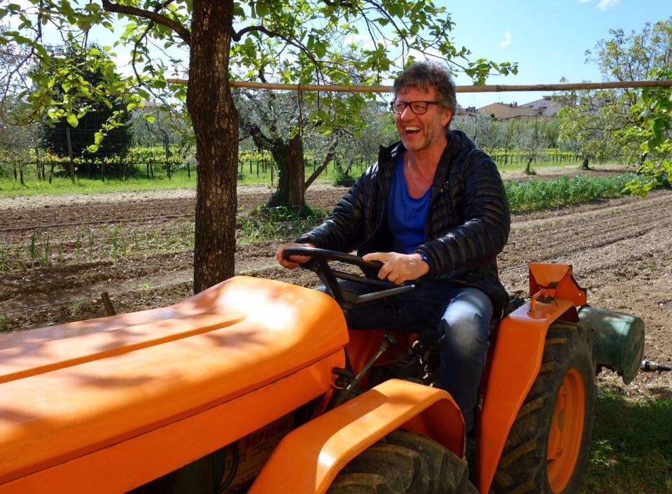 Traktor i vinmark