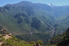 Colca Canyon, Colca Tal, Arequipa, Peru, Condor, Kondor, Chivay, Anden