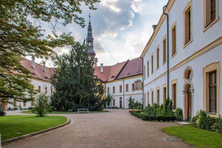 Trær ved slottet i Děčín