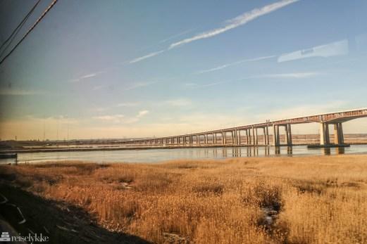 Utsikt fra toget til Washington DC