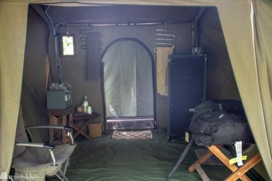 telttur i jungelen