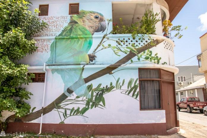 Saint Nicolas street art