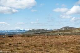 Hallingskarvet nasjonalpark